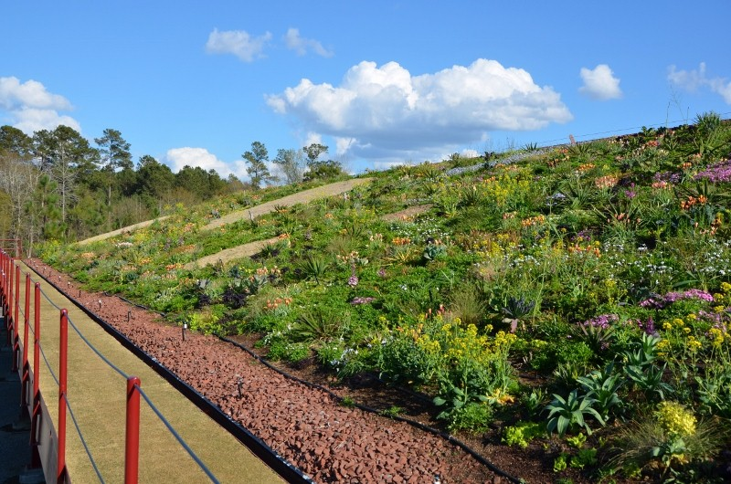 Green Roof Workshop Moore Farms Botanical Garden