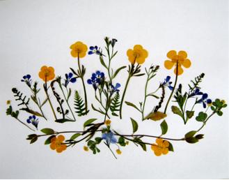 FlowerPressing