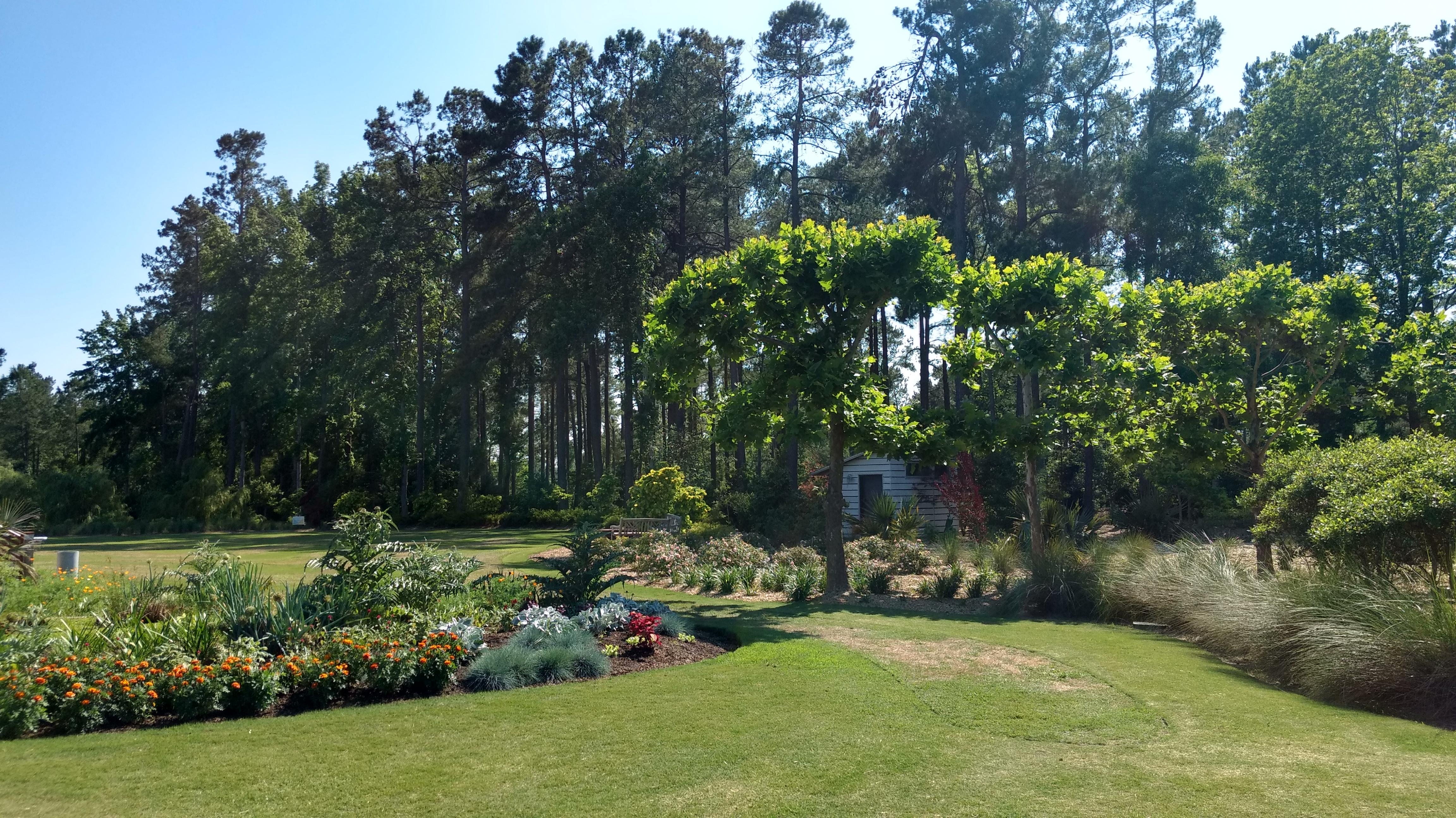 Aesthetic Pruning Workshop Moore Farms Botanical Garden
